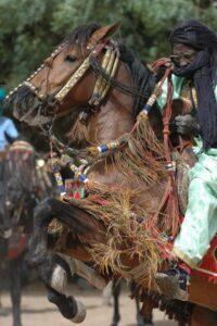 Fulani chevalier at FECHIBA